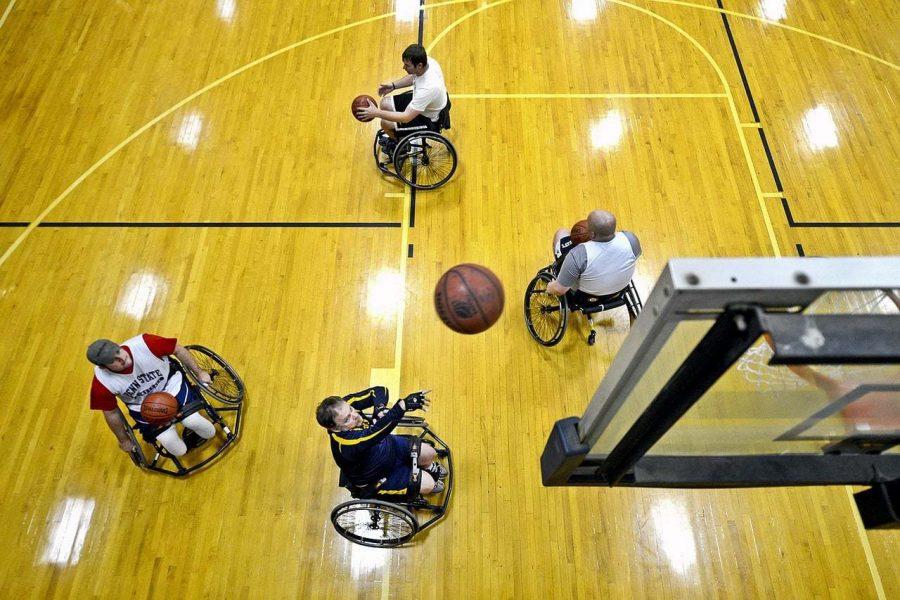Basketball Transport Image